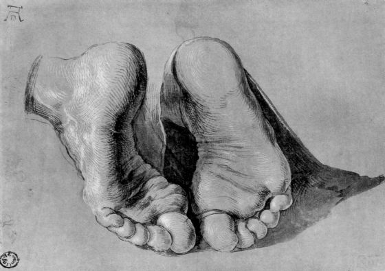 Durer, Albrecht: Feet of an Apostle. Fine Art Print/Poster. Sizes: A4/A3/A2/A1 (001220)